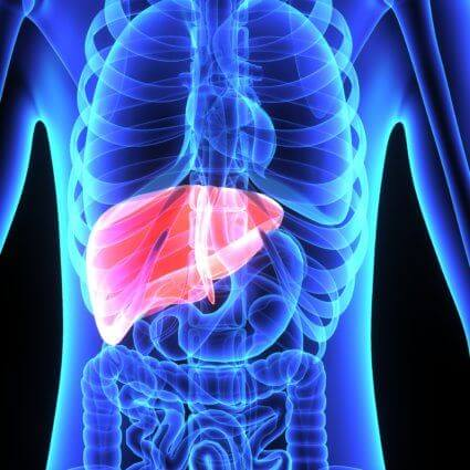 Alcohol And Hepatitis Have A Closely Connected, And Mutually Damaging, Relationship