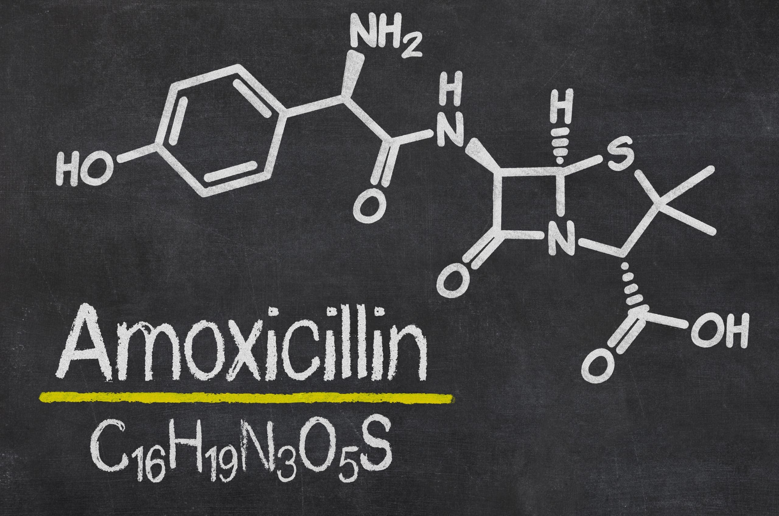 Alcohol and Amoxicillin: Find More Information - Alcohol Rehab Guide